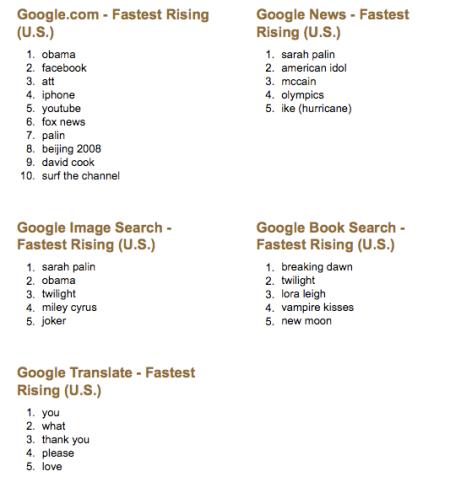 2008 US Google Zeitgeist